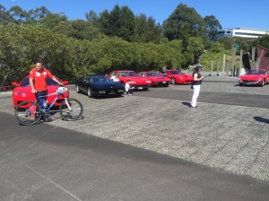 Ferrari owners club day at Brays Bay Reserve